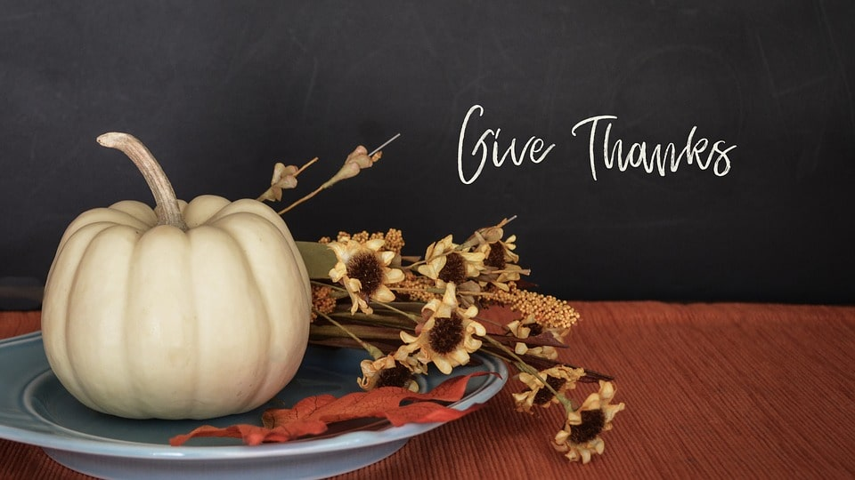 Give Thanks and Be Merry with Sneeze-Free Holidays